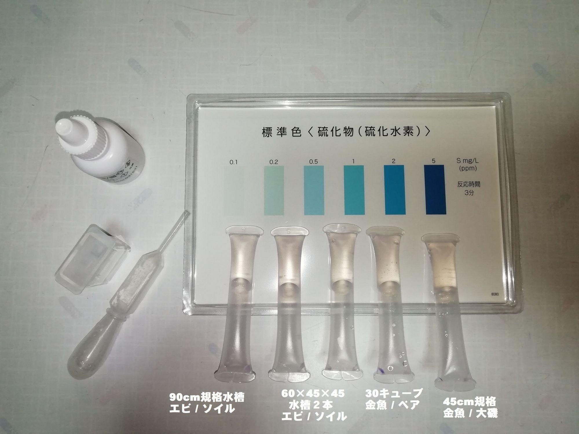 硫化水素検査
